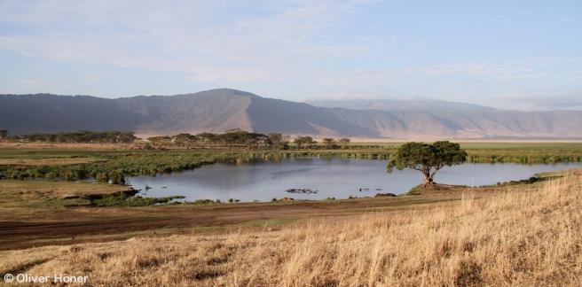 Vue de la source Ngoitokitok