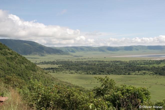 Vue du côté ouest du Cratère de Ngorongoro