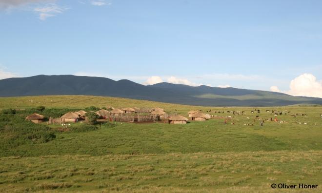 Village Massaï dans l'Aire protégée du Ngorongoro